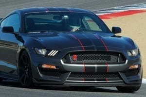 Mustang cropped