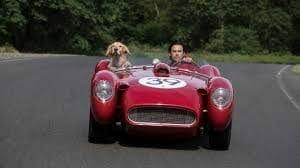 "Member Movie Night @ Avalon ""The Art of Racing in the Rain"""